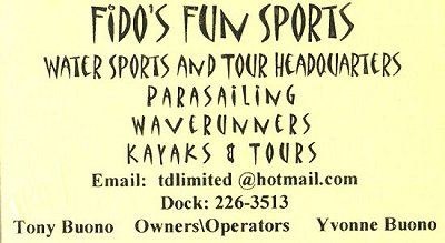 Fido's Fun Sports